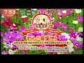 きょうのわんこ「オセロ」(2017年10月6日放送)
