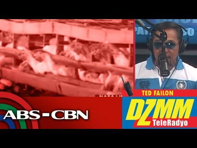 DZMM TeleRadyo: Loans for farmers in bird flu areas available next week