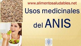 Usos medicinales del ANIS