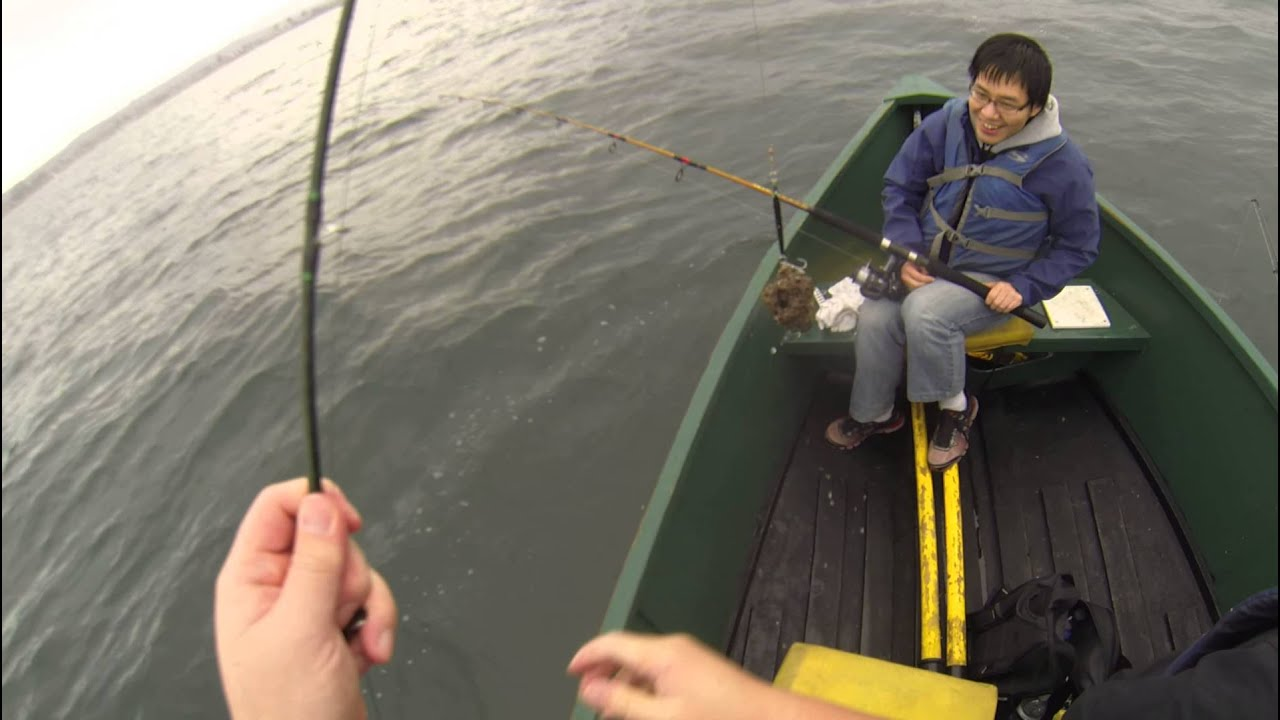 Rock Cod Fishing  Caught a Granite Grouper in Santa Cruz