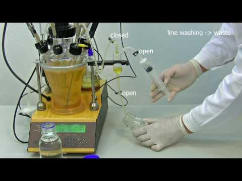 Autoclavable bioreactor fermenter LAMBDA MINIFOR: Sterile sample taking (sampling)
