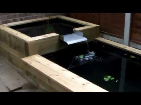 Wooden Fish Videolike