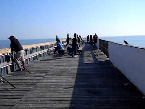 Fishing on the Sunglow Pier in Daytona Beach Florida