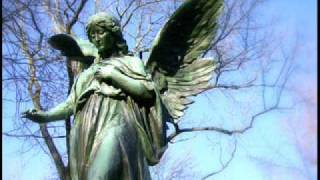 Watch All Angels Salve Regina video