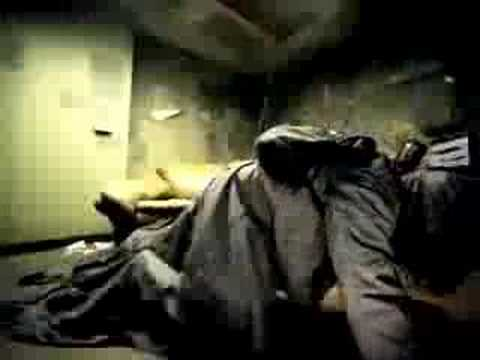 The Used - The Bird And The Worm (Video)