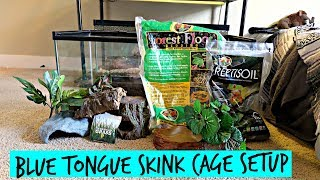 how to set up a blue tongue skink cage