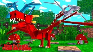 EVIL WYVERNS ATTACK THE DRAGONS! - How To Train Your Dragon w/TinyTurtle