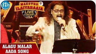 Maestro Ilaiyaraaja Live Concert - Alagu Malar Aada Song - Hariharan || San Jose, California