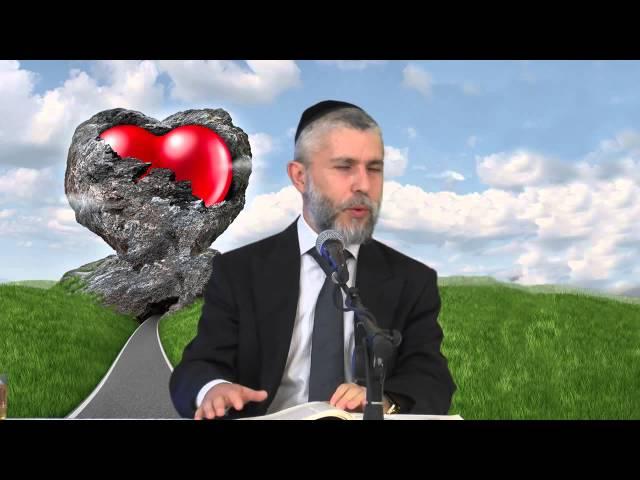 הרב זמיר כהן - סדנה לזוגיות מוצלחת -- דרכי ההתמודדות עם תלונות מצויות