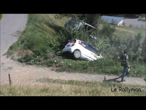 Best of rallye 2016 ( crash ans show )