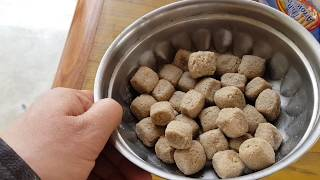 Adult dog food review for dogs