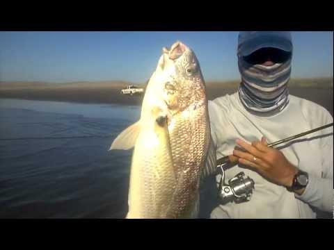 SURF FISHING ADVENTURE YouTube