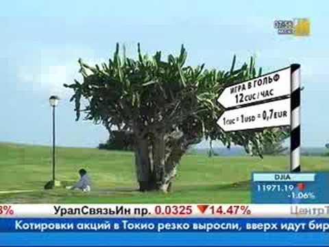 Cuba Libre Nyc