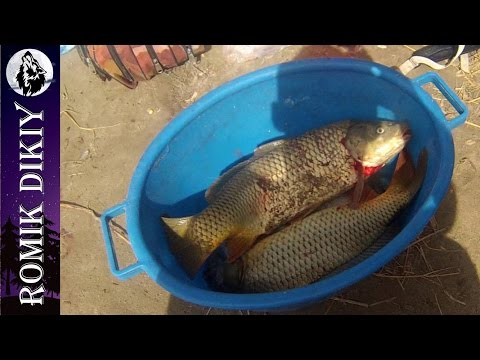 рыбалка топар 2016