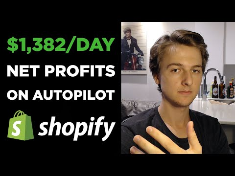Automating Your Dropshipping Store | $1,382/Day Profit on Autopilot