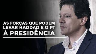 As forças que podem levar Haddad e o PT à presidência | Foro de São Paulo e estratégia das tesouras