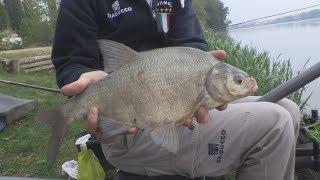 Trabucco TV - Match Spot - Laghi di Mantova - Ep. 2 - Pole Fishing