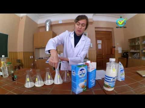 Молоко, мифы и легенды. Проверка молока в домашних условиях.