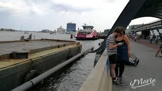 GAYPRIDE AMSTERDAM CANAL VLOG