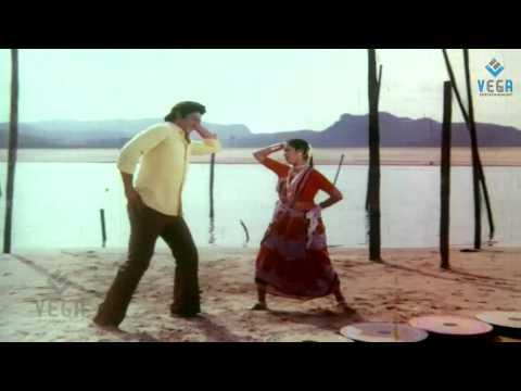 Trisulam Movie Songs - Pannindellaku Pushkaralu Song