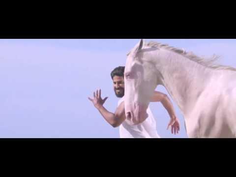 HappyBirthdayDulquer  DQFWA UAE