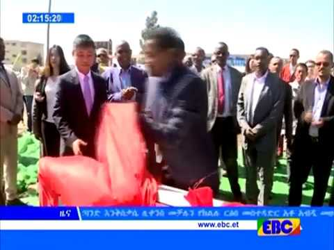 Latest Ethiopian News - EBC TV