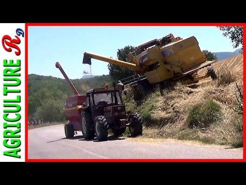 New Holland AL 59 EXTREME  - Hillside Combine