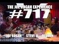 Joe Rogan Experience #717   Steve O