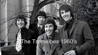 *** Someone Someone - Brian Poole and The Tremeloes