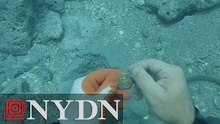 Diver Finds $1 Million In Coins Off Florida Coast In 15 Feet of Water