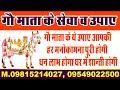 सेवा या गौ पूजन के लाभ  Gau Mata ki sewa aur pujan ke labh in hindi   astrology upay