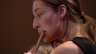 Shostakovich Symphony No 9 Gergiev Mariinsky Orchestra
