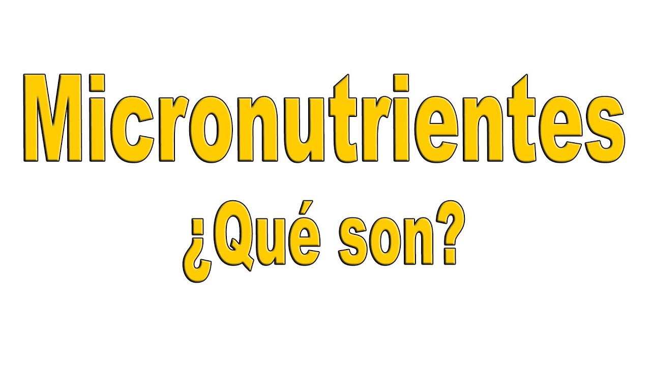 Micronutrientes que son los micronutrientes youtube for Que son los comedores escolares