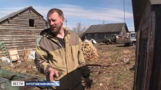 Фермер из Вытегры планирует открыть контактный зоопарк