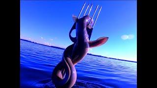 Подводная охота на угря