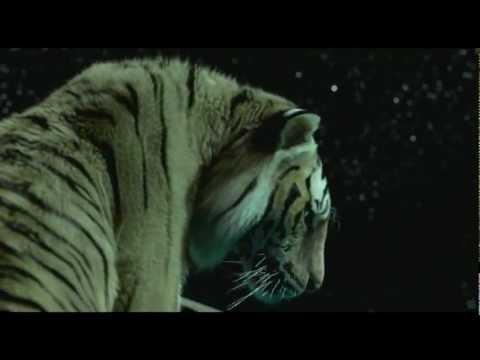 Life of Pi Official Trailer تريلر فيلم حياة باي