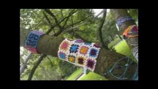 Yarn Bombing at my local park