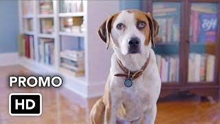 """Downward Dog (ABC) """"We're in This Together"""" Promo HD"""