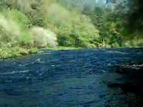Canoagem Rio Vouga