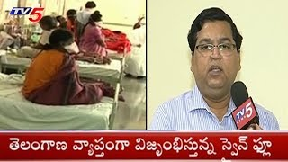 తెలంగాణ వ్యాప్తంగా విజృంభిస్తున్న స్వైన్ ఫ్లూ! | Rapid Spread Of Swine Flu in Telangana