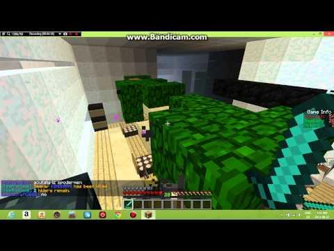 Playing Hide and seek on the Hive, IP in the description