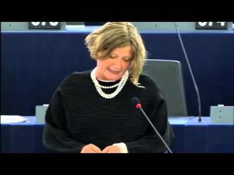 Gál Kinga hozzászólása a Magyarországról szóló EP vitában - 2015.05.19.