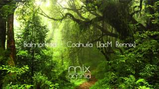 Download Lagu The Silent Forest - Chillstep Mix Gratis STAFABAND