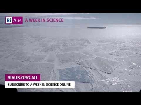 Antarctic Sea Ice - Expanding Ice on a Warming Planet