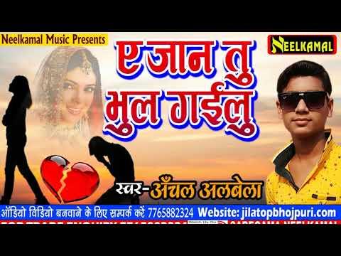 सबसे दर्द भरा गाना  - ए जान तु भुल गईलू  - A Jaan Tu Bhul Gailu || Anchal Albela - Hit Sad Song 2018