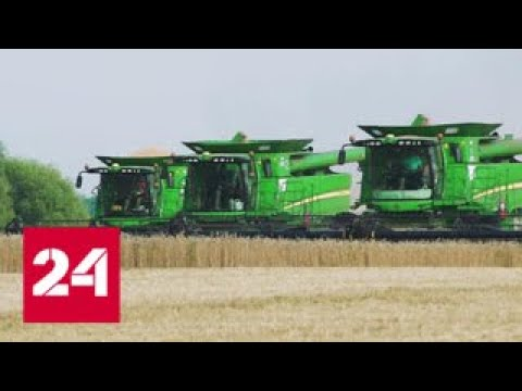 Зерно нарасхват. Специальный репортаж Артема Кола - Россия 24