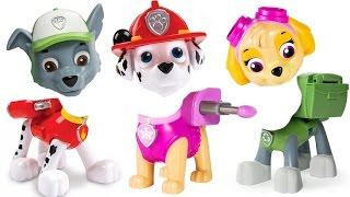 - Paw Patrol Pups