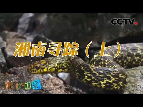 中國-地理·中國-20211018 奇幻生境·湘南尋踪(上)