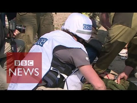 Reporter injured in Ukraine ceasefire visit - BBC News