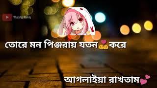 Maya re Maya tui oporadhi re bangla new songs